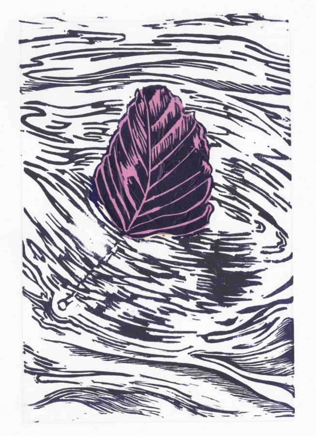 Drifting Beech Leaf - Violet On Pink
