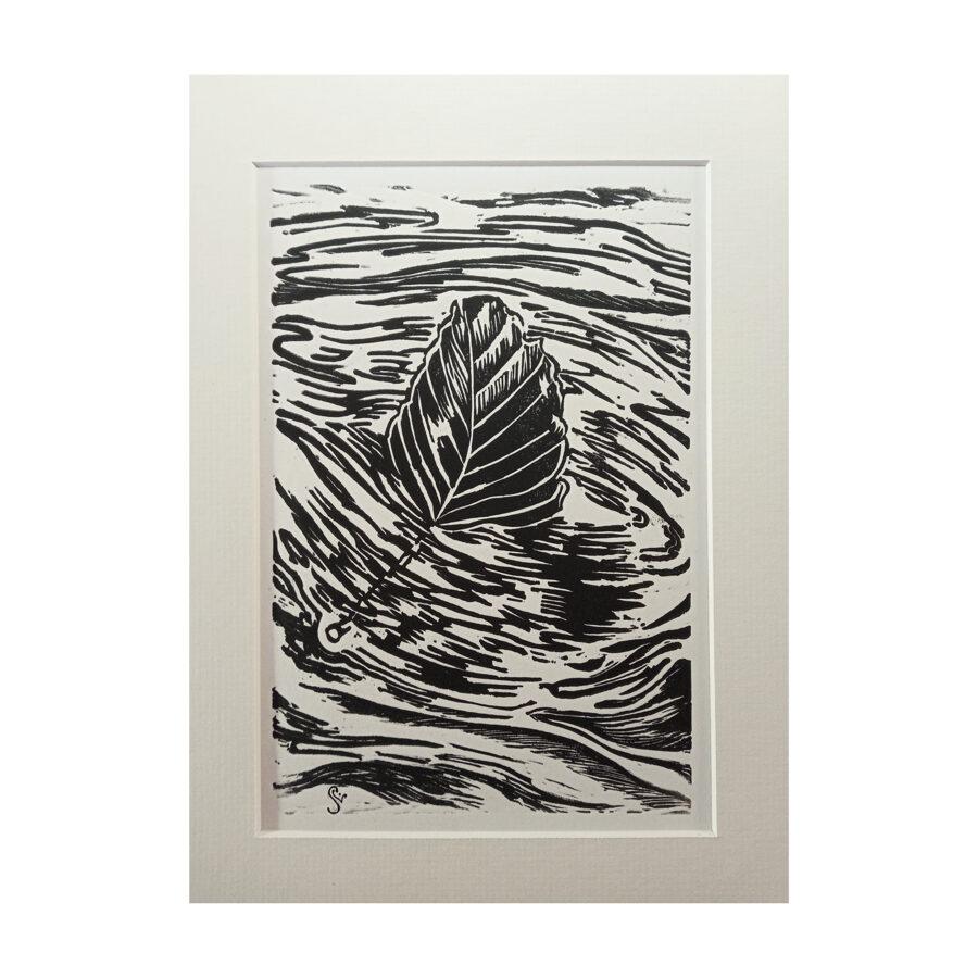 Drifting Beech Leaf - Black & White