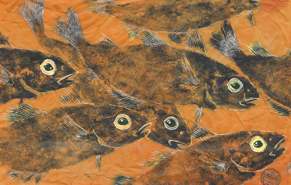 Haddock Shoal On Tangerine
