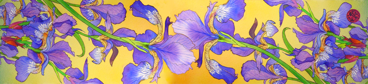 Irises Paris Chiffon (Poly)