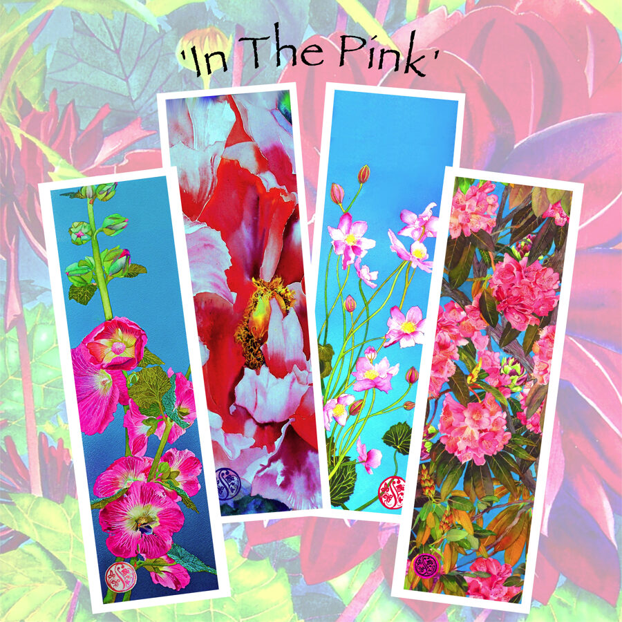 In The Pink - Long Card Collection