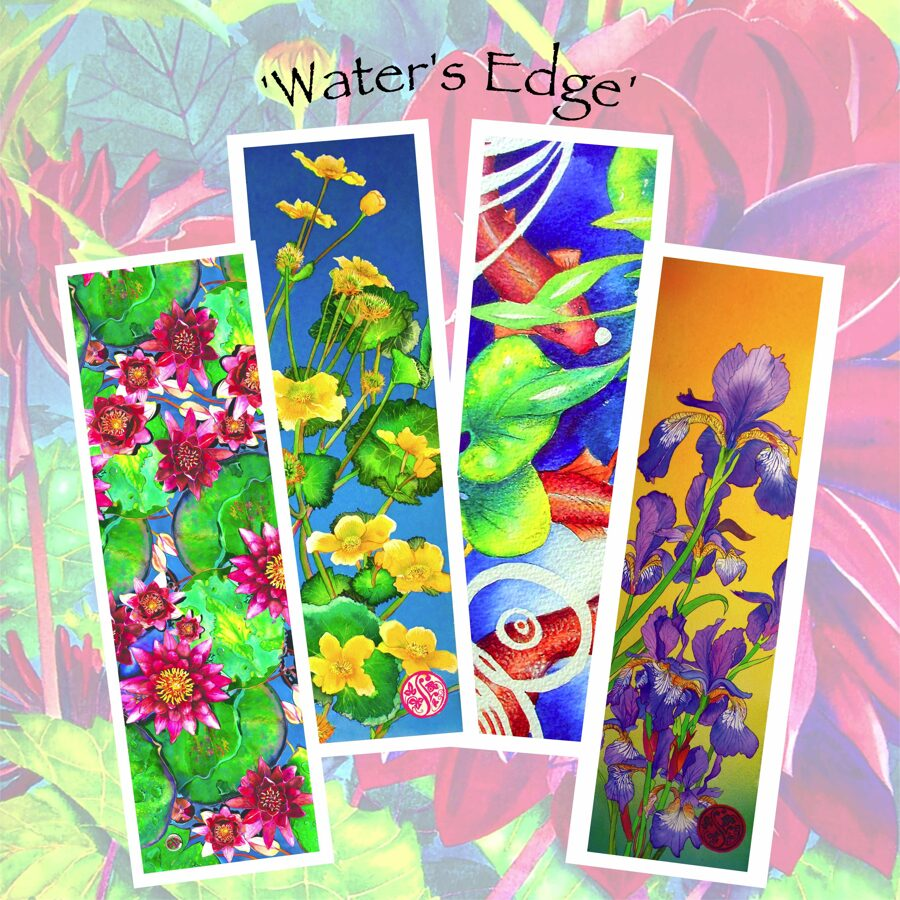 Waters Edge - Long Card Collection