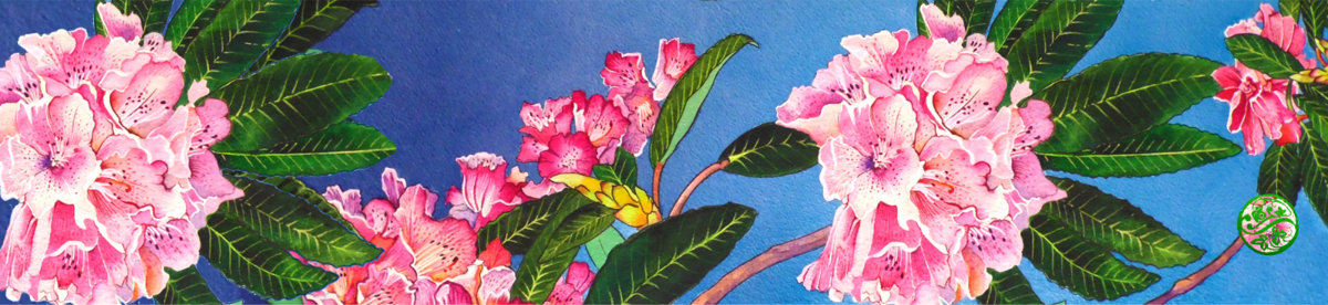 Rhododendron, Lanhydrock Paris Chiffon (Poly)