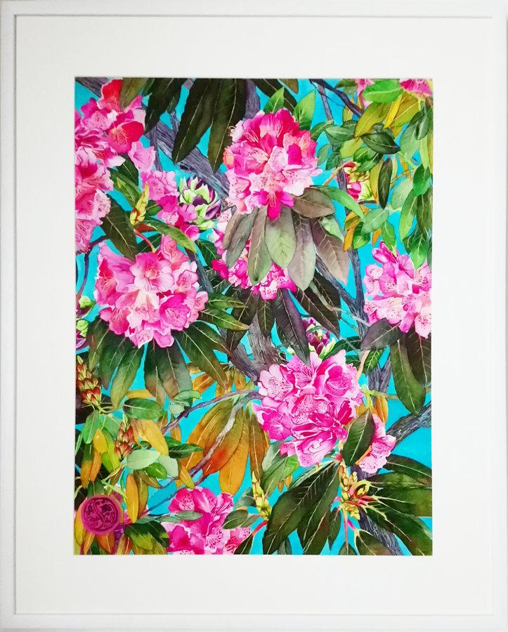 Rhododendron, Hendorgor
