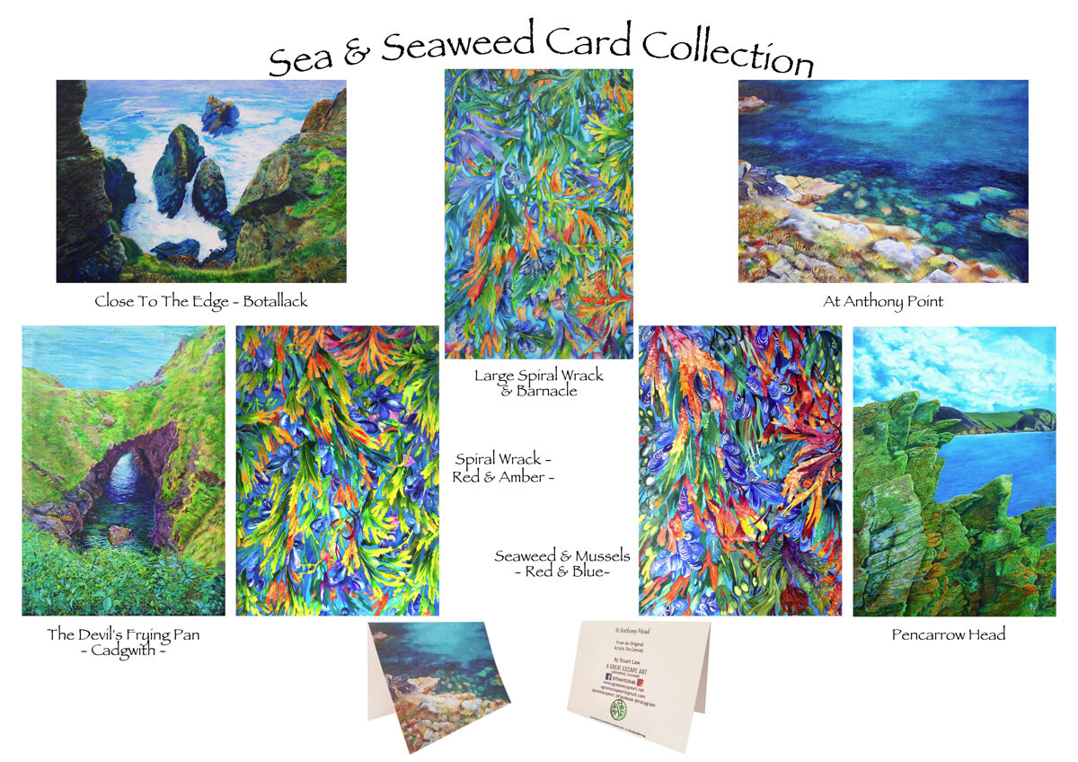 Seaweed & The Sea Greetings Card Pack (7 for the price of 5)