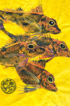4 Gurnard (Pink Fins) On Lemon