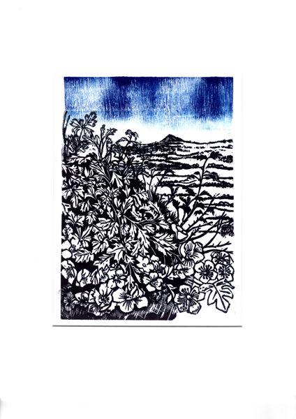 Past Hawthorns (Blue 2)