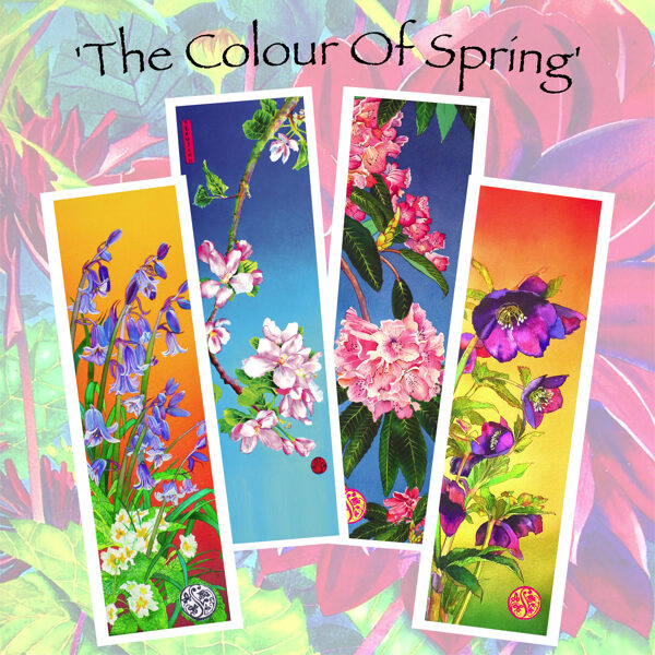 The Colour Of Spring - Long Card Collection