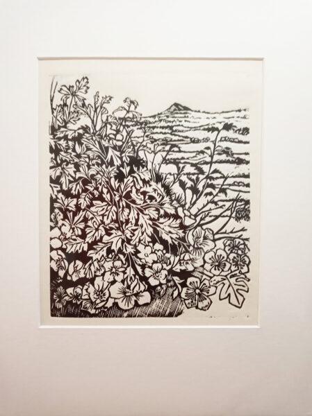 Past Hawthorns - Black On Sandstone