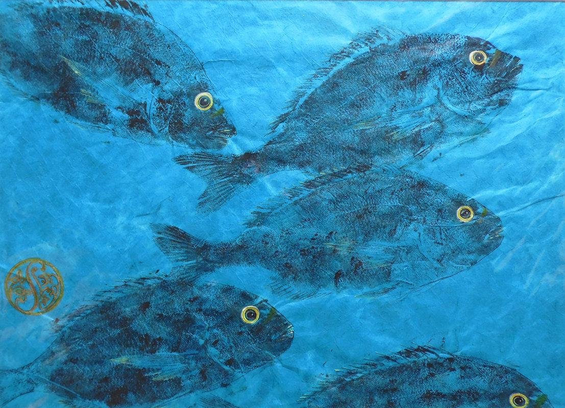 Gilt Head Sea Bream Shoal On Azure
