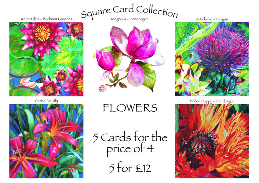Square Cards Flower Collection